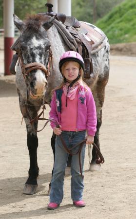 Tate_horse_1